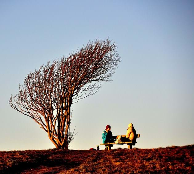 People sitting on a bench in the sun