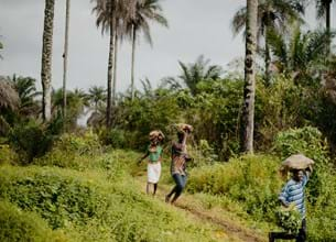People walking through forest carrying cassava