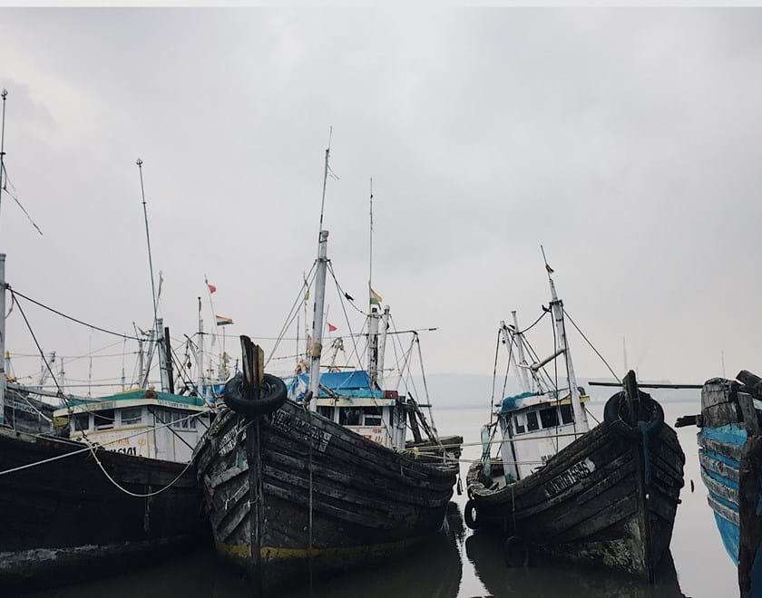 A row of fishing boats